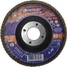 Круг лепестковый торцевой абразивный для шлифования 115 х 2223ммP40 ЛУГА 3656-115-40