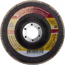 Круг лепестковый торцевой БАЗ P80 125 х 22 мм БАЗ 36563-125-80